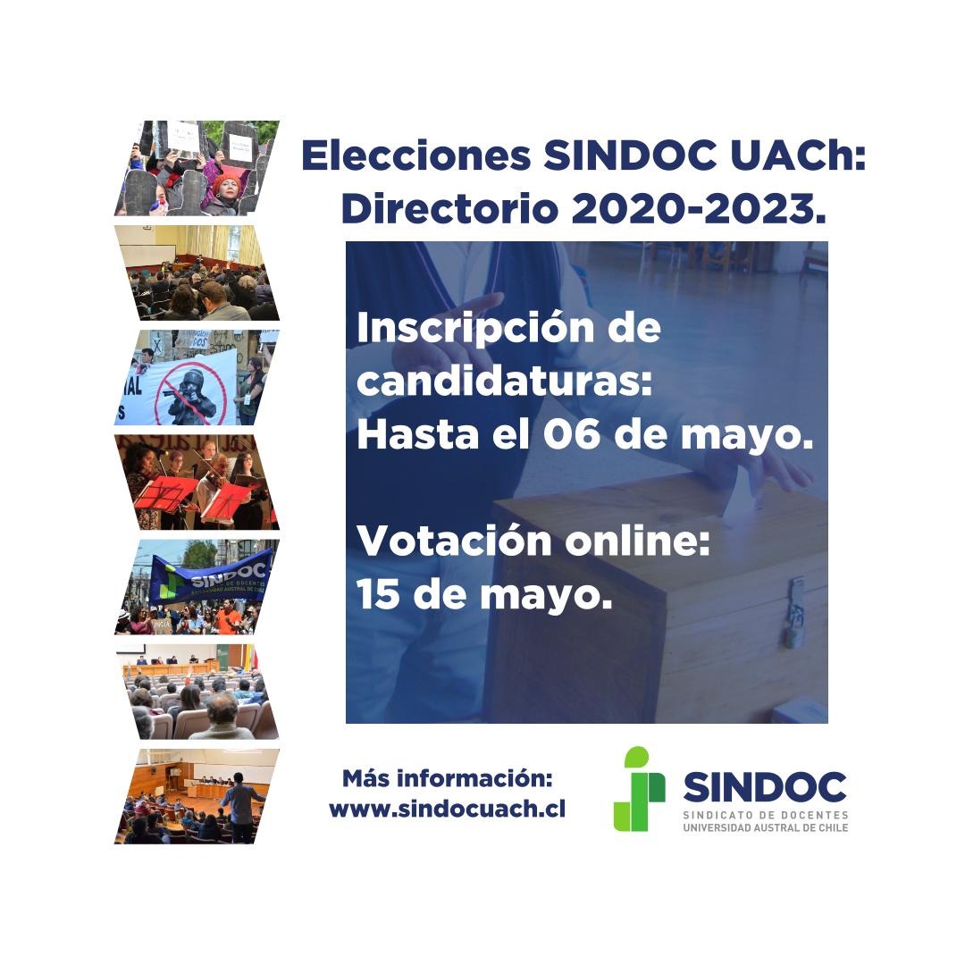 Elecciones SINDOC UACh.