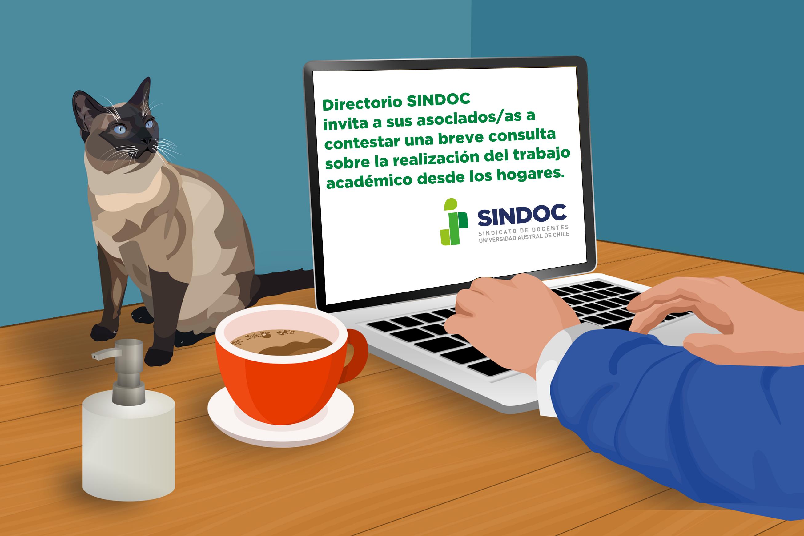 Directorio SINDOC invita a contestar consulta sobre la realización del trabajo académico desde los hogares.