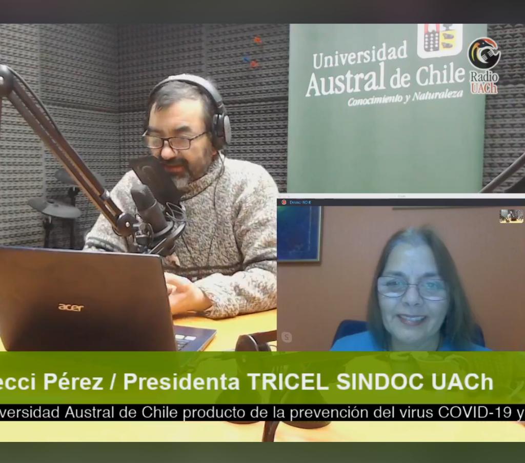 Participación de Ester Fecci como presidenta de la Comisión Electoral del SINDOC en Radio UACh.