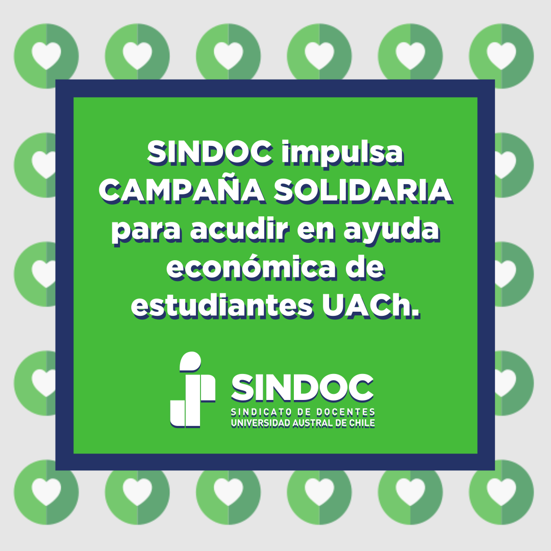 Campaña Solidaria SINDOC UACh