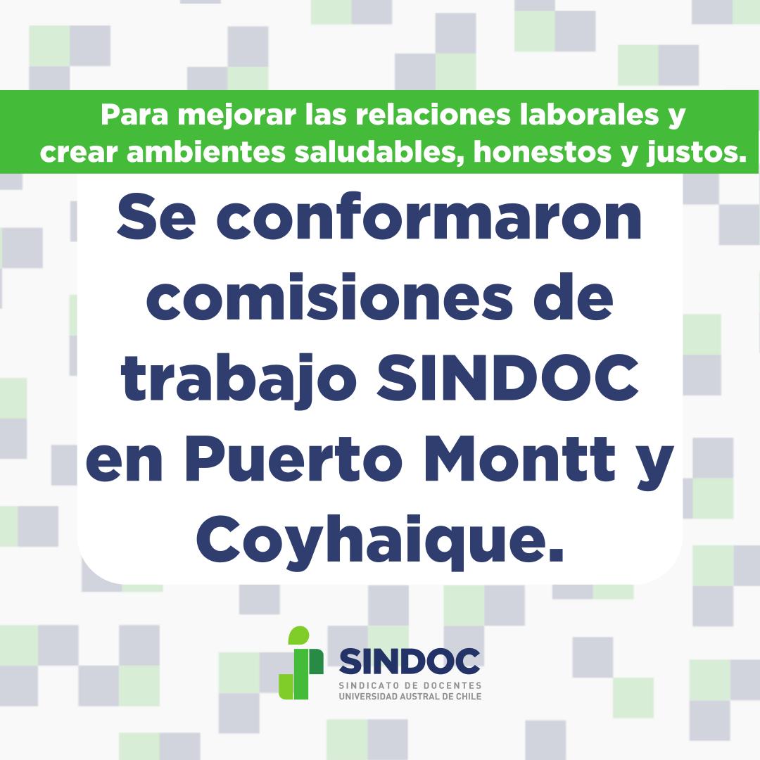 Se conformaron comisiones SINDOC en Puerto Montt y Coyhaique.