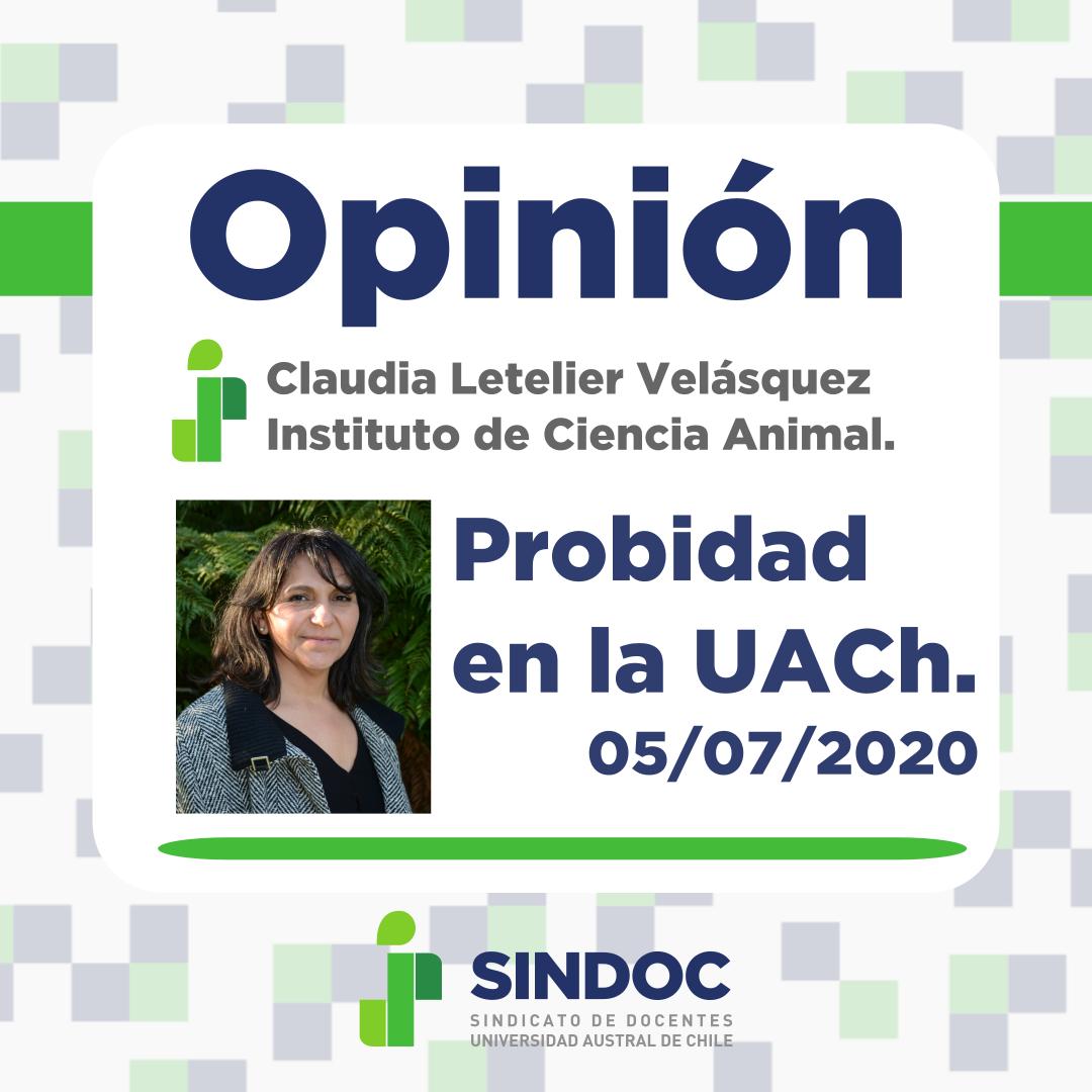 Opinión de Claudia Letelier Velásquez: Probidad en la UACh.