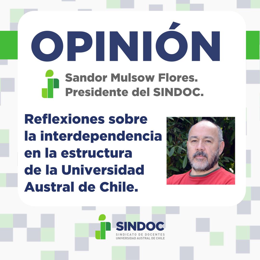 Opinión Sandor Mulsow: Reflexiones sobre la interdependencia en la estructura de la UACh.