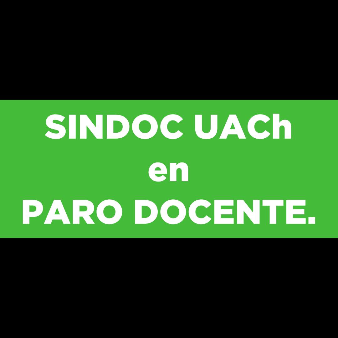 El Sindicato de Docentes UACh se encuentra en Paro Docente