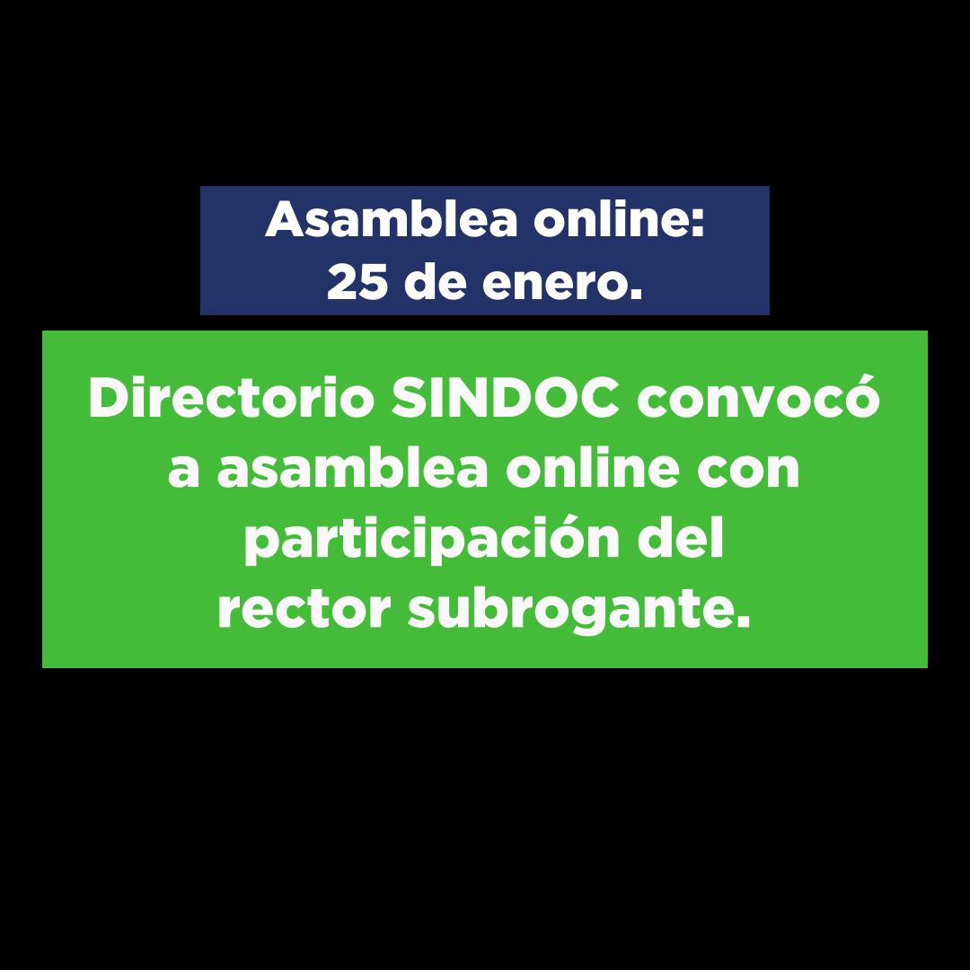 Asamblea online con participación de rector subrogante: Lunes 25 de enero 2021.
