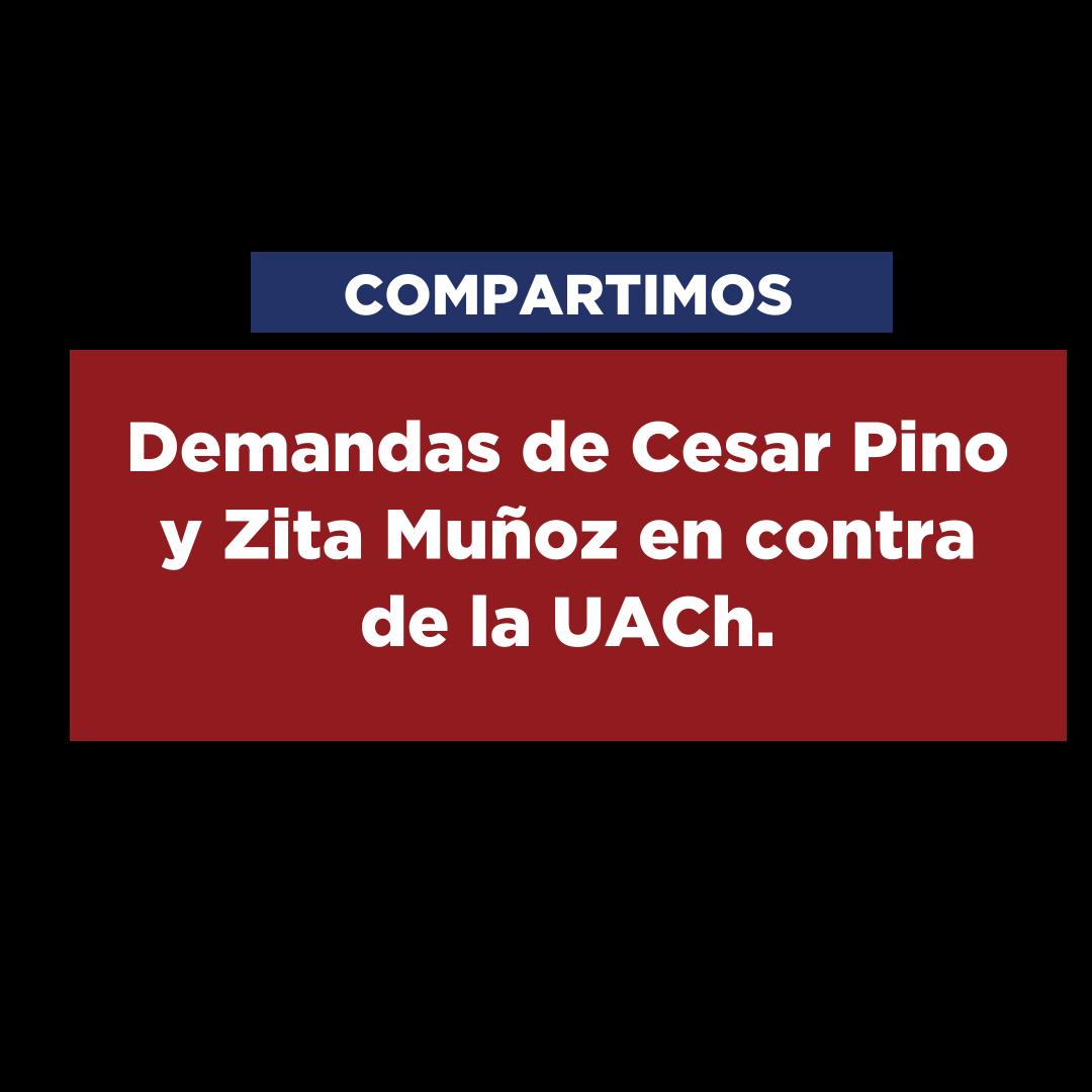 Demandas de Cesar Pino y Zita Muñoz por vulneración de derechos fundamentales durante la relación laboral en contra de la UACh.