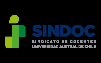 Declaración Pública SINDOC 04 de mayo 2021.